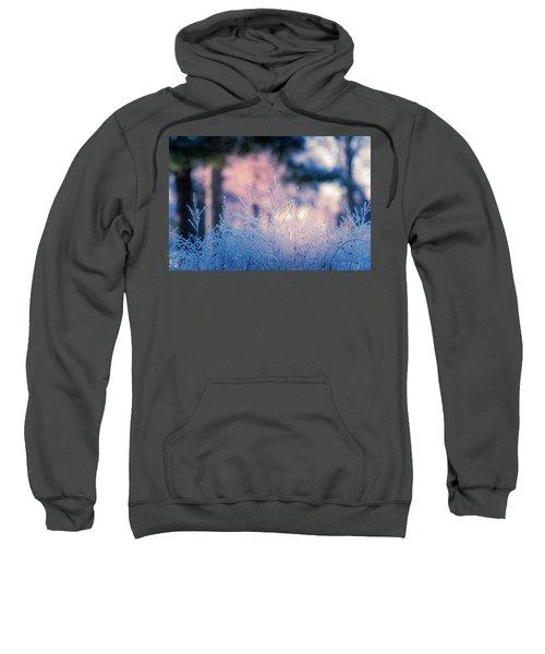Winter Morning Light Sweatshirt