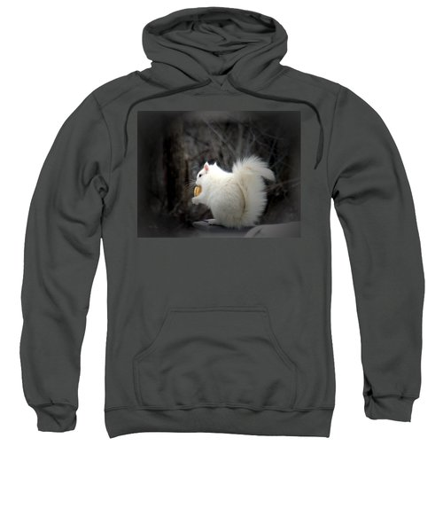Winter Nibbles Sweatshirt
