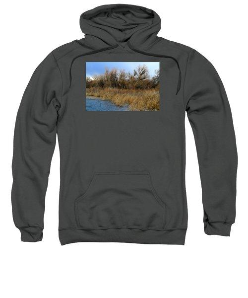 Winter Trees Along The Snake Sweatshirt