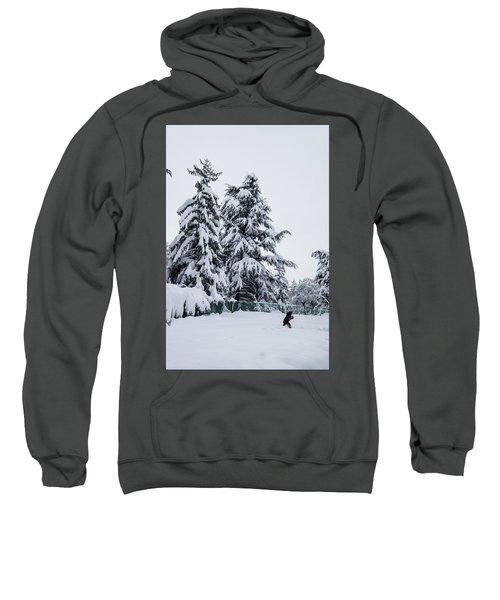 Winter Trekking-2 Sweatshirt