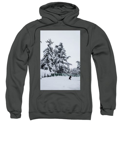 Winter Trekking-2 Sweatshirt