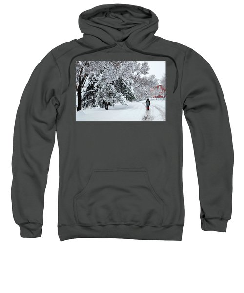 Winter Trekking-3 Sweatshirt