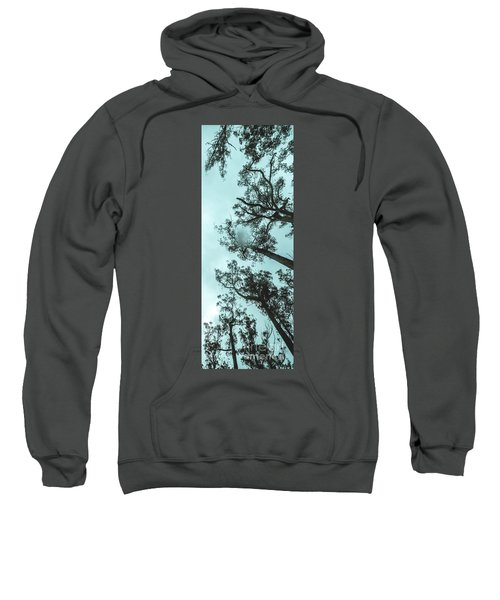 Winter Woods Sweatshirt