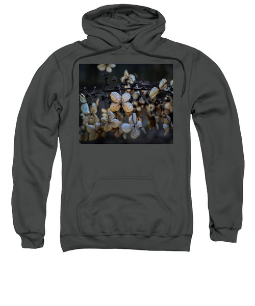 Winterized Hydrangea Sweatshirt