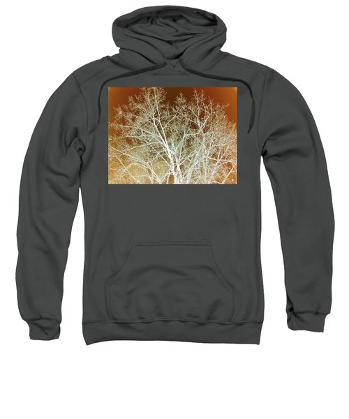 Winter's Dance Sweatshirt