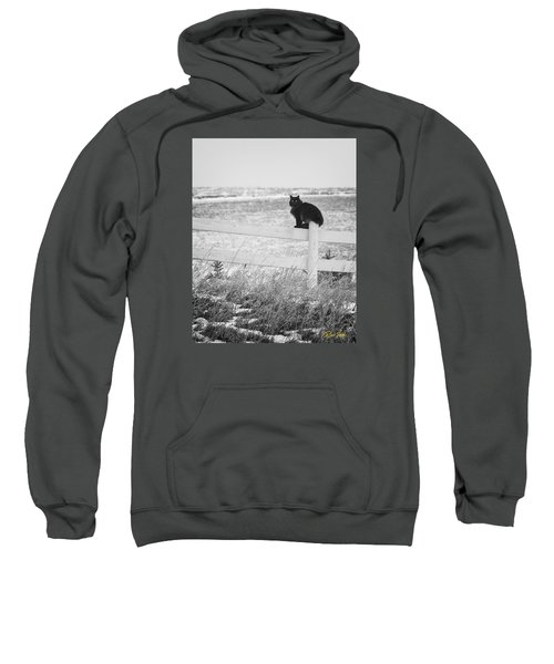 Winter's Stalker Sweatshirt