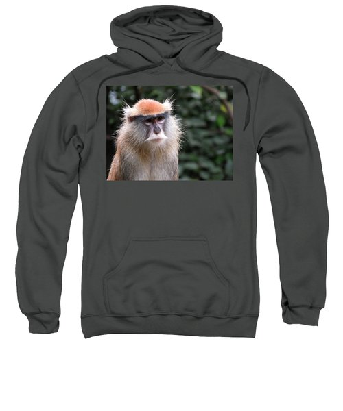 Wise Eyes Sweatshirt