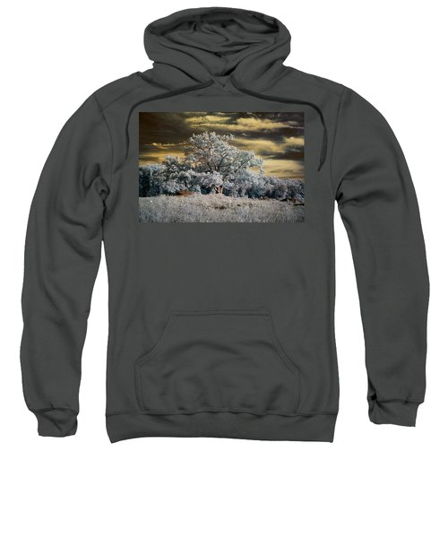 Witness To History Sweatshirt