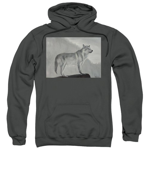 Vantage Point Sweatshirt