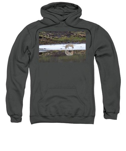 Wolflection Sweatshirt
