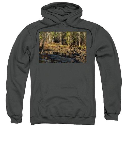 Wooded Backwash Sweatshirt