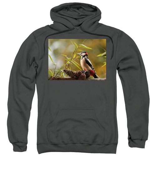 Woodpecker 3 Sweatshirt by Heike Hultsch