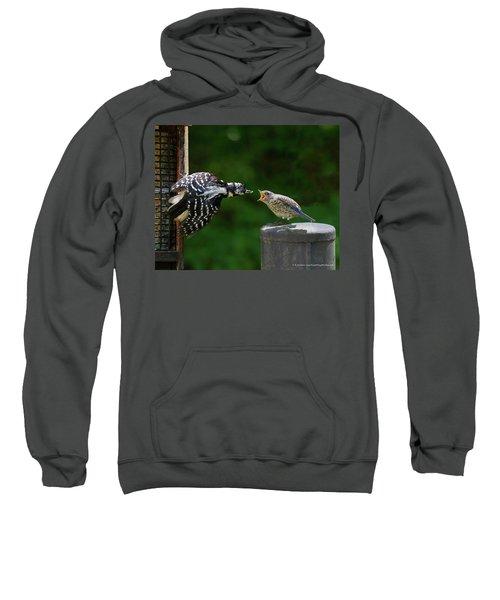 Woodpecker Feeding Bluebird Sweatshirt
