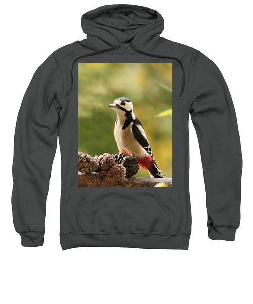 Woodpecker In Winter Sweatshirt by Heike Hultsch