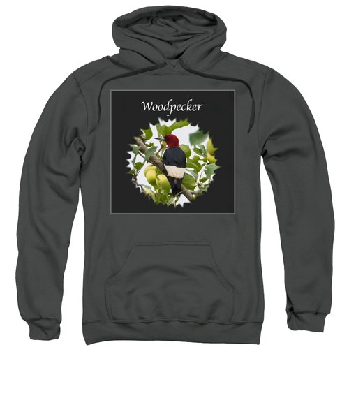 Woodpecker Sweatshirt by Jan M Holden