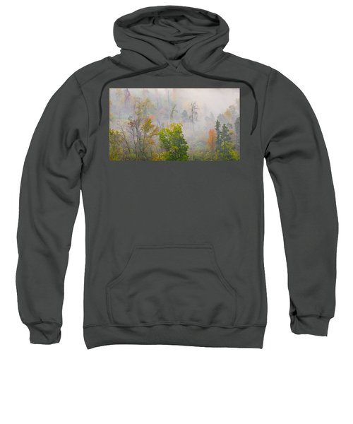Woods From Afar Sweatshirt