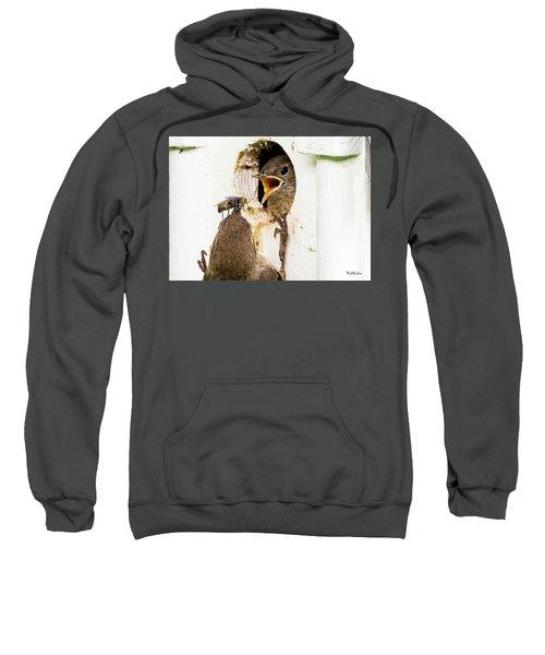 Wren Breakfast Sweatshirt
