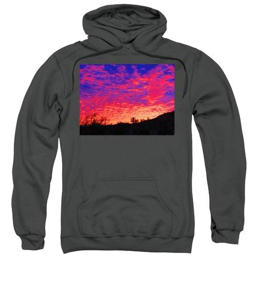 Y Cactus Sunset 1 Sweatshirt