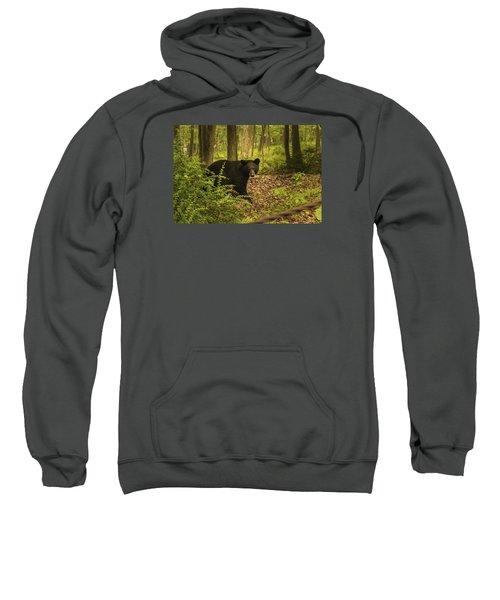 Yearling Black Bear Sweatshirt