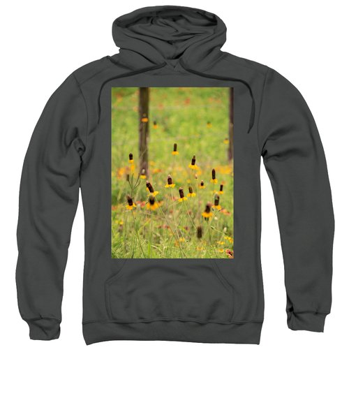 Yellow Cone Flower Sweatshirt