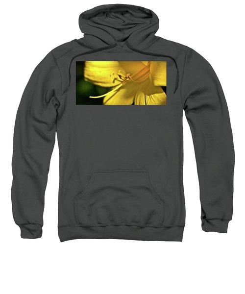 Yellow Daylily Sweatshirt