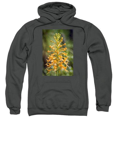 Yellow Fringed Orchid Sweatshirt