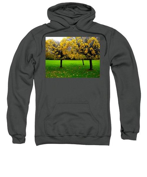Yellow Leaves At Muckross Gardens Killarney Sweatshirt