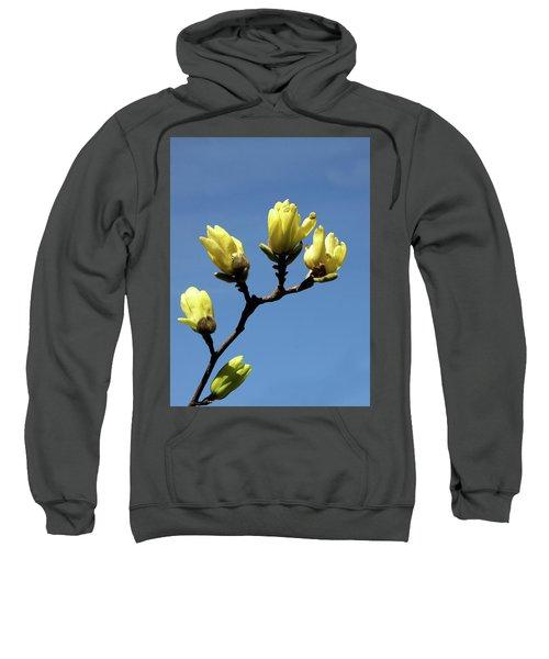 Yellow Magnolia Sweatshirt