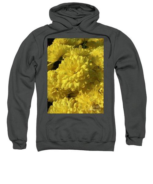 Yellow Mums Sweatshirt
