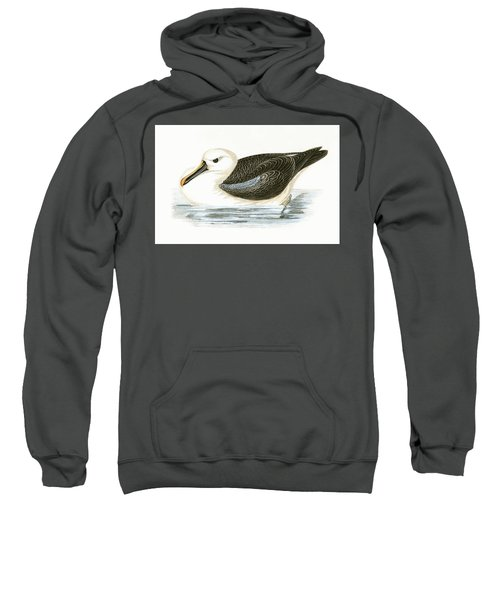 Yellow Nosed Albatross Sweatshirt