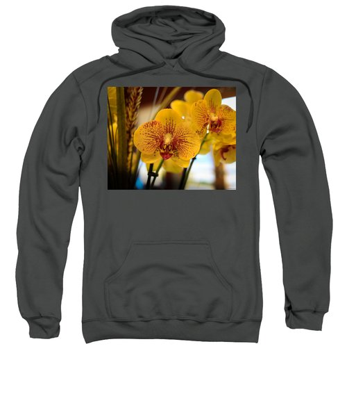 Yellow Orchis Sweatshirt