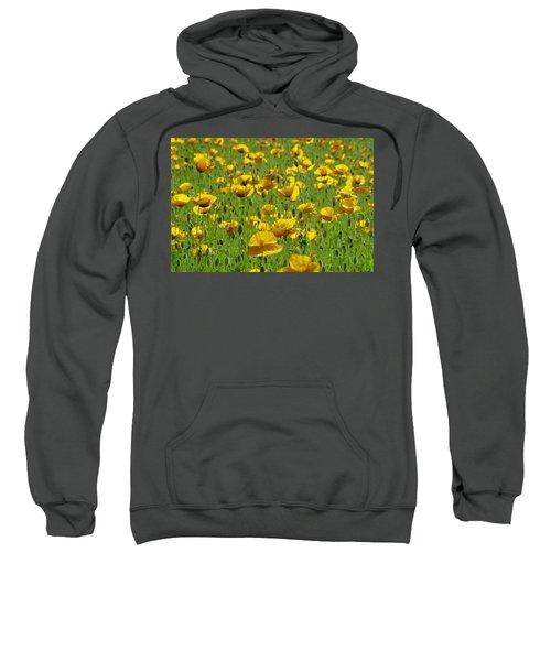 Yellow Poppy Field Sweatshirt