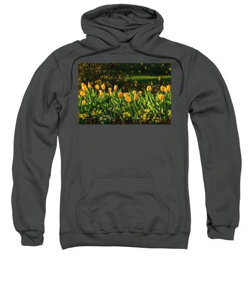 Yellow Spring Fever Sweatshirt