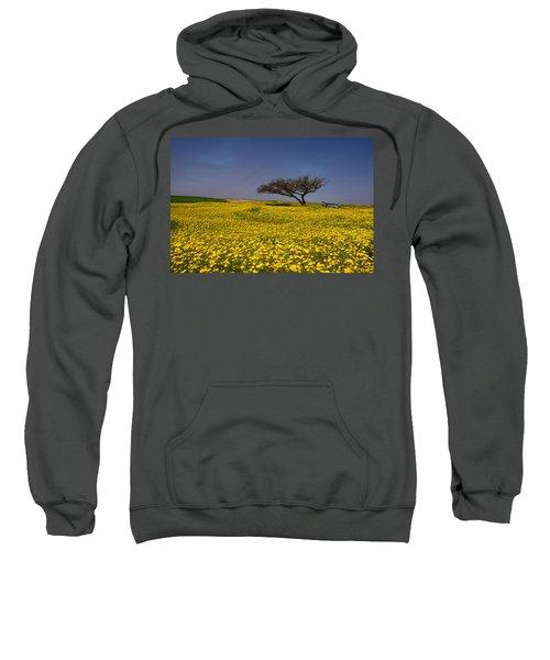 Yellow Spring Sweatshirt
