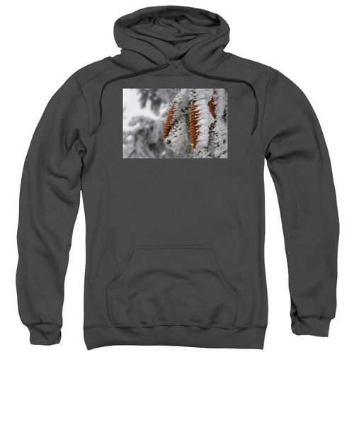 Yep, It's Winter Sweatshirt