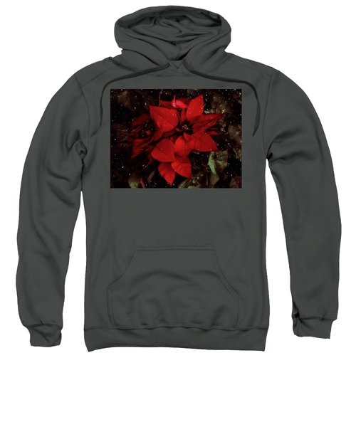 You Know It's Christmas Time When... Sweatshirt