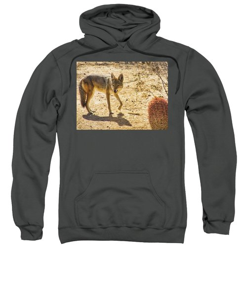 Young Coyote And Cactus Sweatshirt