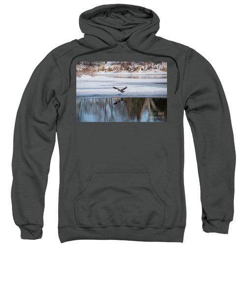 Young Eagle Reflection And Shadow Sweatshirt