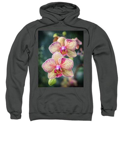 Sweatshirt featuring the photograph You're So Vain by Bill Pevlor