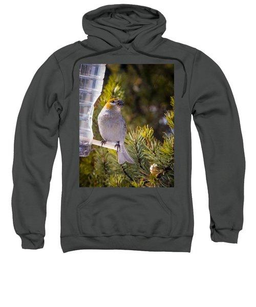 Yum Yum Sweatshirt