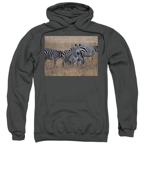Zebras Walking In The Grass 2 Sweatshirt by Exploramum Exploramum