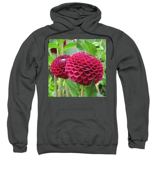 Zinnia Duet Sweatshirt