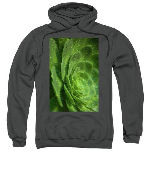 Aenomium_4140 Sweatshirt