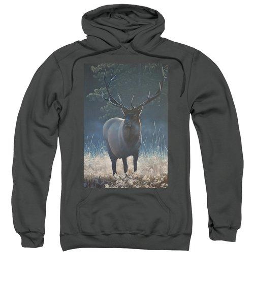 First Light - Bull Elk Sweatshirt