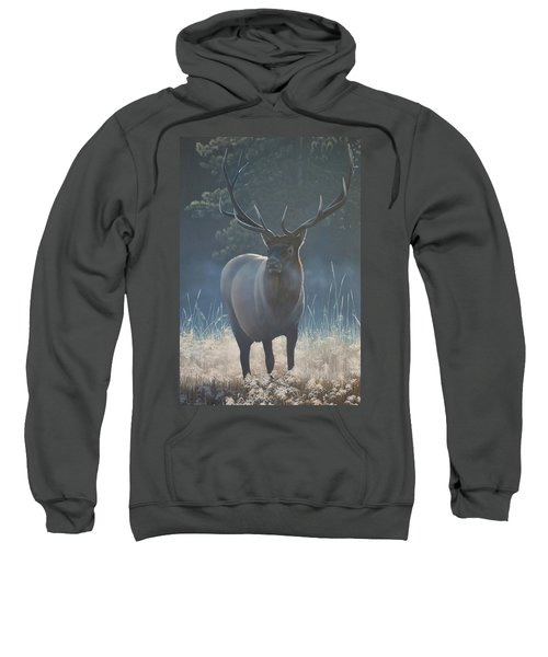 First Light - Bull Elk Sweatshirt