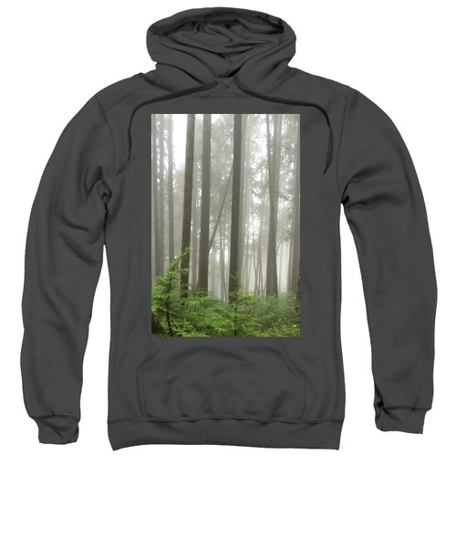 Foggy Forest Sweatshirt