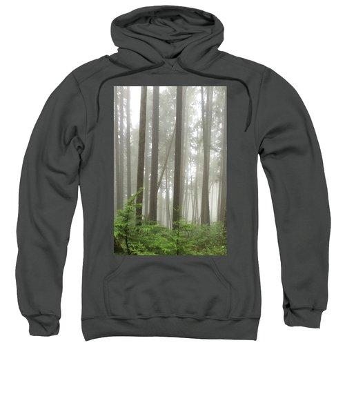 Foggy Forest Sweatshirt