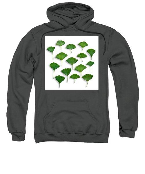 Gingkos Spring Sweatshirt