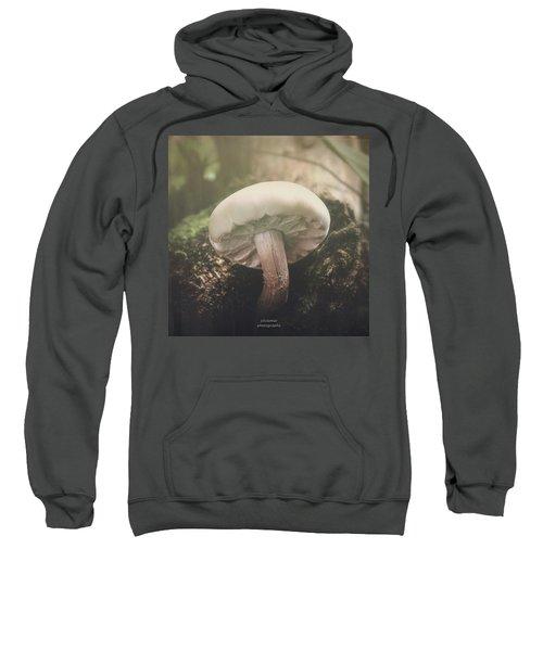 Look At The Mushroom Sweatshirt