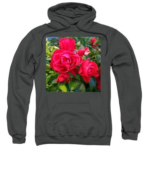Rose Is A Rose  Sweatshirt